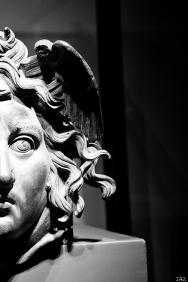 ROME 2019-527
