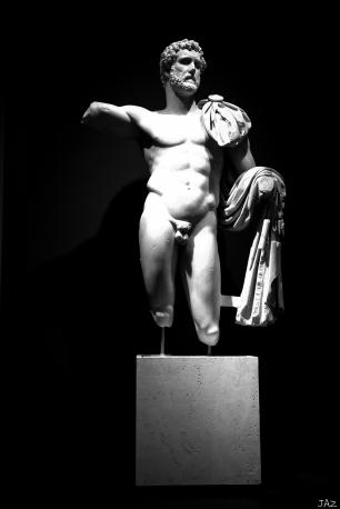 ROME 2019-528