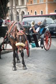 ROME 2019-98
